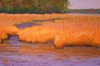 orangegrass_small
