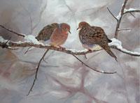 coldbirds